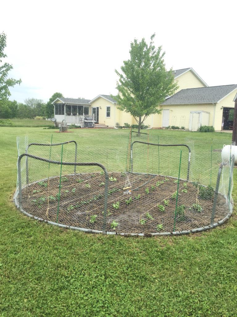 moestuintje met trampolinehek